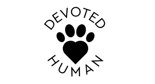 devoted-human-at-ashevilles-organicfest