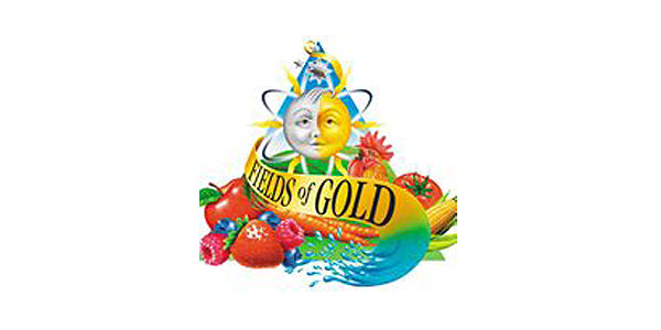 fields-of-gold-at-ashevilles-organicfest