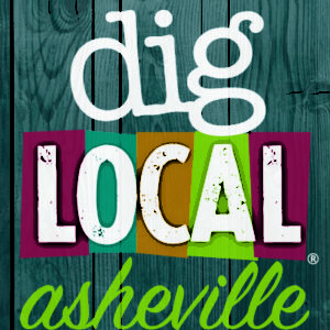 dig-local